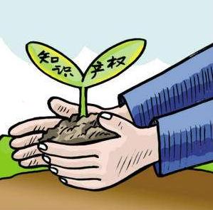 深圳小微企业可获知识产权专项资助