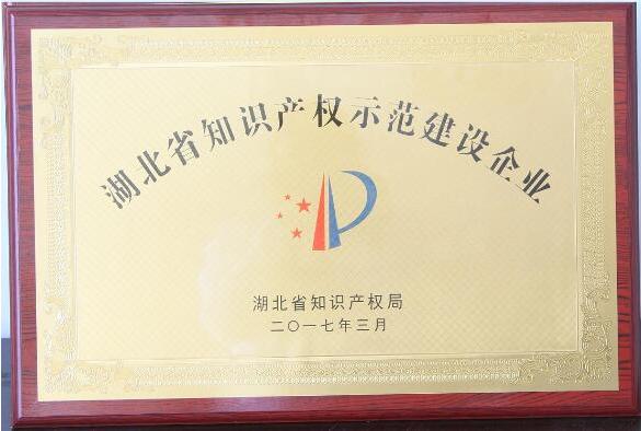"""湖北武汉华电被授予""""湖北省知识产权示范建设企业"""""""
