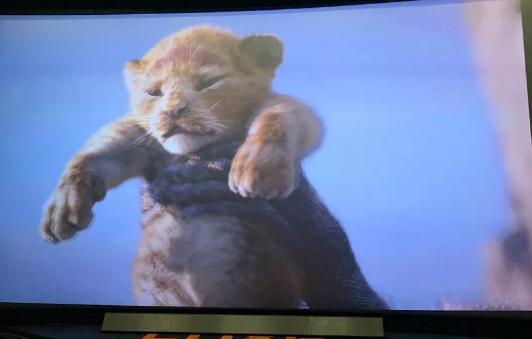 郑恺拍摄《狮子王》 电影画面遭指责