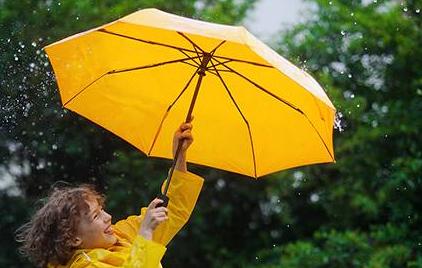 雨傘商標轉讓流程以及類別