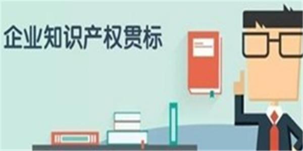 亳州市通过知识产权贯标认证,一次性给与10万元奖励!