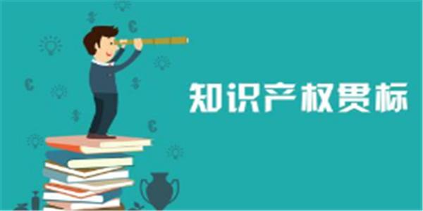 贯标奖励5万元,上海市松江区知识产权资助办法!