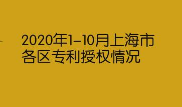 2020年1-10月上海市各区专利授权情况