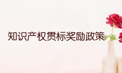 岳阳经开区知识产权贯标奖励政策,贯标奖励100000元!