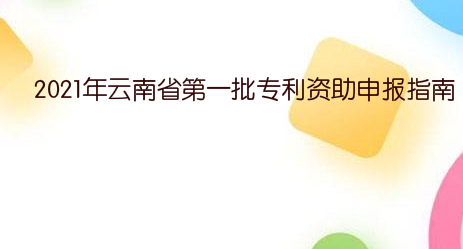 2021年云南省第一批專利資助申報指南