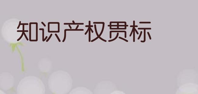 福建省龍巖市知識產權貫標獎勵政策