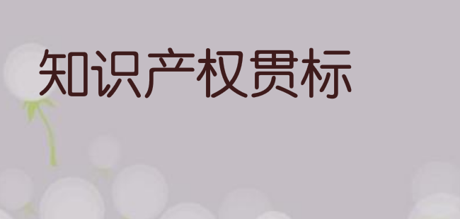 2021年深圳市寶安區發明專利資助、知識產權貫標獎勵