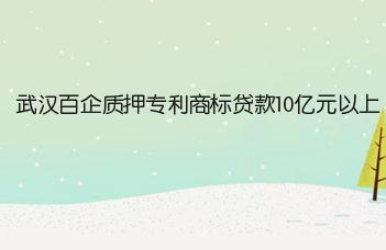 武汉百企质押专利商标贷款10亿元以上