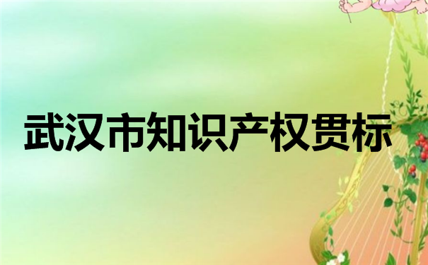 武汉市知识产权贯标