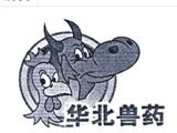 华北制药集团商标
